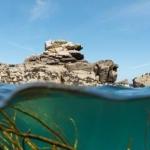 Thalazur fait le plein de minéraux marins