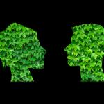 C'est tendance… Esprit «green» et RSE