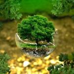 Agir ensemble pour l'Environnement : les résultats de la consultation Make.org