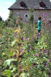 Gamme-Beauty-garden-Dan-Courtice (4)
